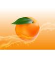 delicious juicy orange in spray of juice vector image vector image