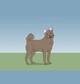 dog running color vector image