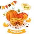 pumpkin pie card vector image