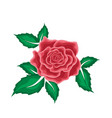 red rose in leaves in cartoon style vector image vector image