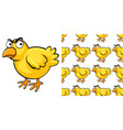 seamless background design with little chick vector image vector image