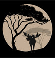 silhouette scene with moose at fullmoon night vector image vector image