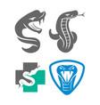 snake health shield logo template design set vector image vector image