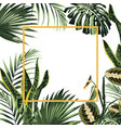 tropical frame with exotic plants vector image vector image