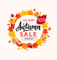 autumn sale banner in frame from autumn leaves vector image