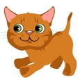Cartoon playful ginger kitten with green eyes vector image vector image