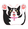 cute black and white cat attack vector image vector image