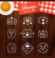 honey vintage logo set vector image vector image