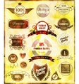 Set of retro vintage labels and ribbons vector image vector image