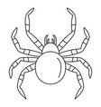 tarantum spider icon outline style vector image