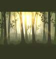 tree trunks sunset background vector image vector image
