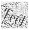 Your Attitude Counts Word Cloud Concept vector image vector image
