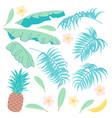 banana leaves palm fronds pineapple and plumeria vector image vector image