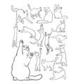 cat line art vector image vector image
