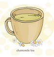 cup chamomile tea a cup chamomile flowers vector image vector image