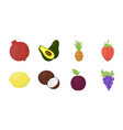 different fruits icons in set collection for vector image