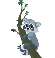 funny cartoon raccoon vector image vector image