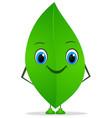Funny leaf vector image