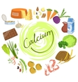 Products Rich In Calcium Infographic vector image vector image