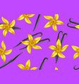 seamless pattern with vanilla sticks and flower vector image