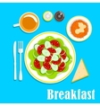 Vegetarian breakfast with salads and tea vector image