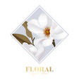 magnolia white isolated flower in rectangle frame vector image