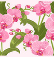 pink purple tender orchid floral seamless pattern vector image vector image