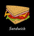 sandwich on black background vector image
