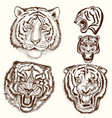 set of hand drawn tattoo with tiger animals vector image vector image