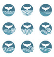 abstract whale tail icons set vector image