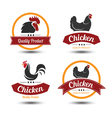 chicken label 4 vector image vector image