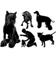 collection of dogs vector image vector image
