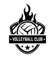 emblem template with volleyball ball isolated vector image vector image