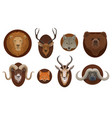 hunting trophies wild animals heads mount vector image vector image