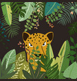 leopard in botanical tropical forest vector image vector image