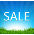 sale poster with grass vector image vector image