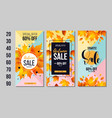 set autumn sale flyer template with lettering vector image