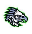 american harpy eagle mascot vector image vector image