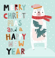 christmas card with cute bear and hand drawn vector image