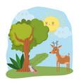 cute animals reindeer and opossum grass tree vector image