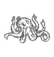octopus animal with human hands engraving vector image vector image