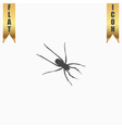 Spider flat icon vector image
