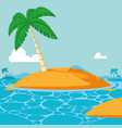 summer and beach cartoons vector image