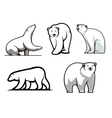 White polar bears set vector image