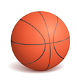 Basketball Ball vector image
