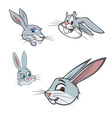 bunny heads vector image vector image