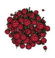 Raspberry frame sketch for your design vector image vector image