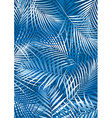 Tropical blue palm leaves in white and blue vector image vector image