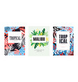 tropical summer banner templates set malibu vector image