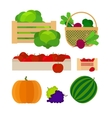 Vegetables and fruits farm baskets vector image vector image